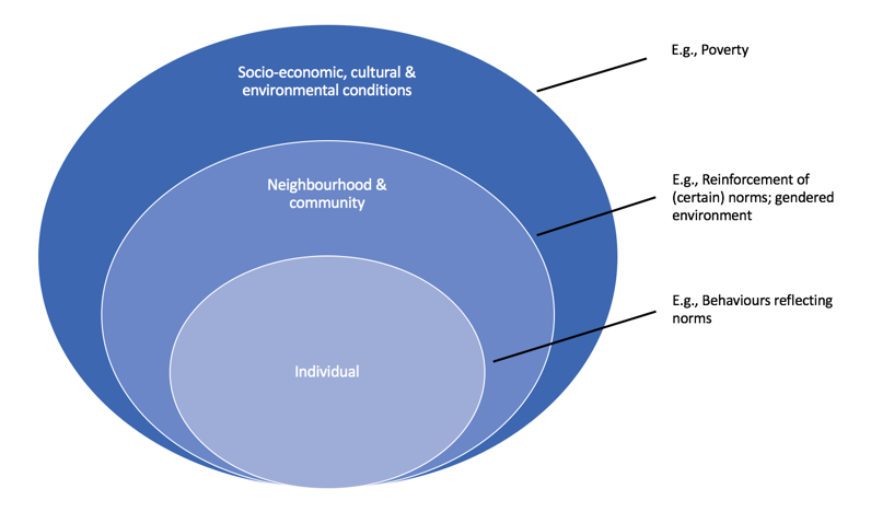 A diagram of the social determinants of health framework.